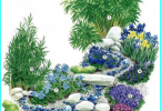 Garden Feng Shui: how to carry out zoning of the garden