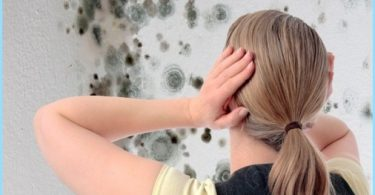 How to get rid of mold in the bathroom: a means of combating