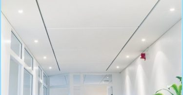 What are the ceiling panels