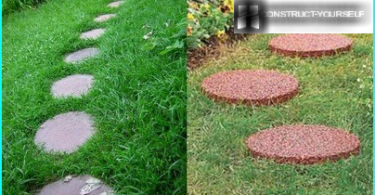 Stealth lawn planting in hot summer: how to save the grass from the sun